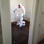 South-Coast-Restoration-Water-Damage-and-Mold-Removal.jpg
